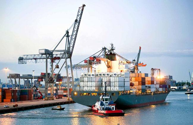 Top 8 công ty vận tải biển tại Việt Nam uy tín nhất hiện nay