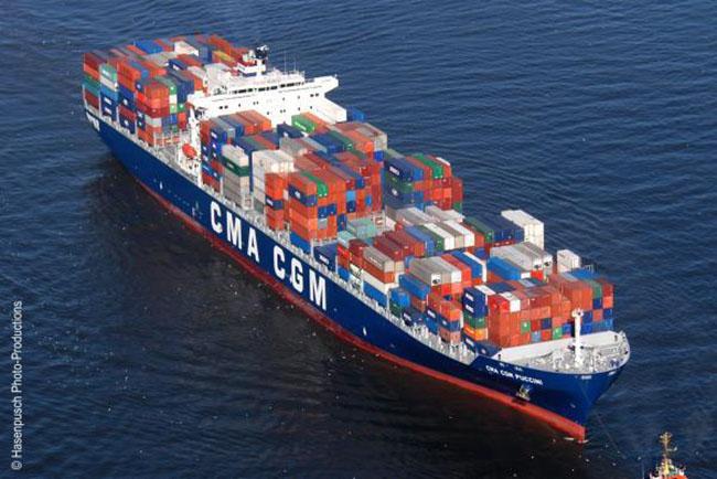 Công ty TNHH Thương mại dịch vụ xuất nhập khẩu Trí Việt